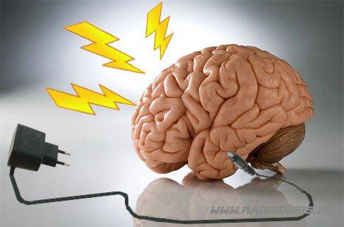 развиваем мозг